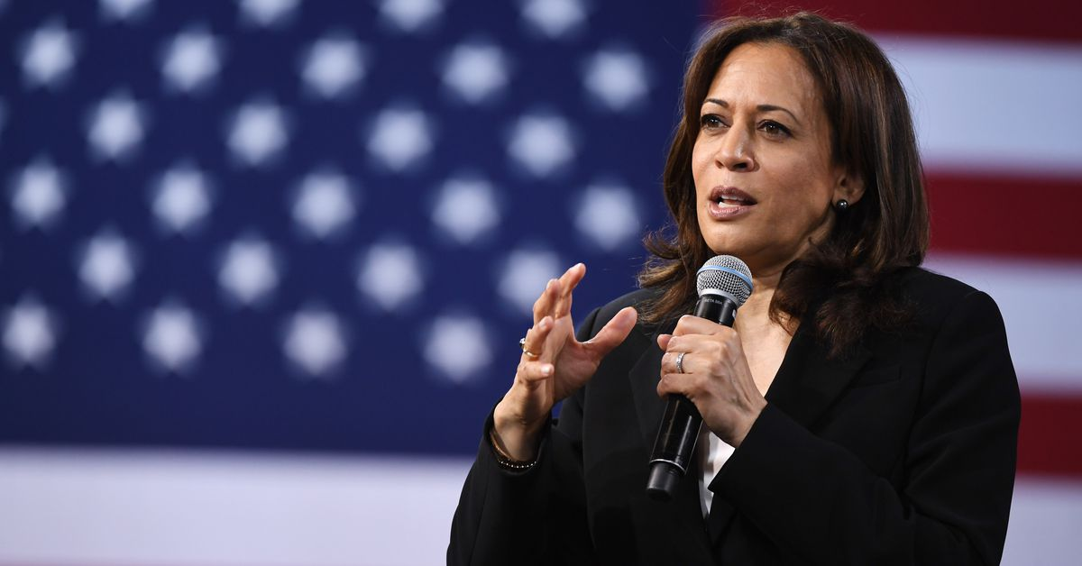 """Kamala Harris vows to hold social media platforms responsible for """"hate"""""""