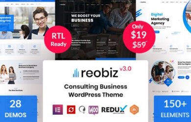 Consulting Business WordPress Theme v31
